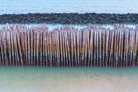 sandbank: Bamboo fence protect sandbank from sea wave