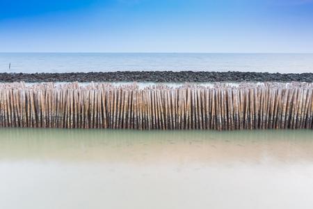 sandbank: Bamboo fence protect sandbank from sea wave nature protection