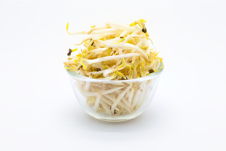 bean sprouts: Bowl of Bean Sprouts on White Background Stock Photo