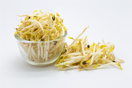 Fresh bean sprout on white background