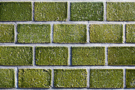 Groene Mozaiek Tegels : Groene mozaïek tegel muur achtergrond royalty vrije foto plaatjes