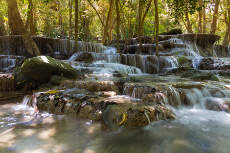 topical: Topical deep forest waterfall