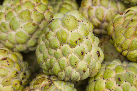 custard apple fruit: Fresh Custard apple fruit in the market, natural fruit background Stock Photo