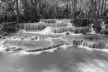 tat: Black and White, deep forest natural waterfalls, beautiful natural landscape background