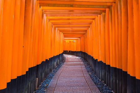 Fushimi Inari Taisha Shrine, the famous down line bright orange, Kyoto Japan