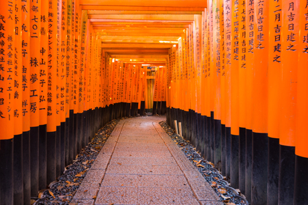 Multiple Toril gates in Fushimi Inari Shrine, Kyoto, Japan