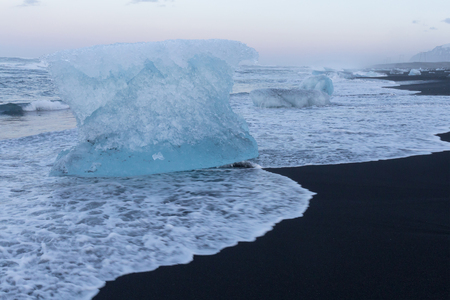 icefjord: Ice breaking from glacier on black sand beach, Iceland natural winter season landscape
