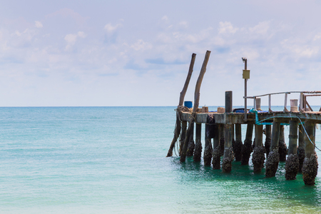 nautral: Fishing jetty leading to ocean skyline, nautral landscape background