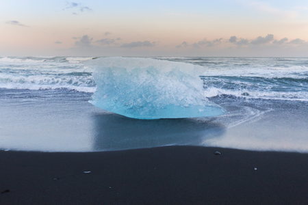 icefjord: Breaking iceberg on black sand beach during late winter, Iceland natural landscape background