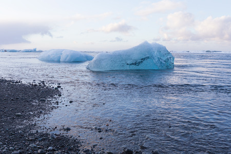Natural ice breaking from glacier on black sand beach, Iceland winter season landscape background