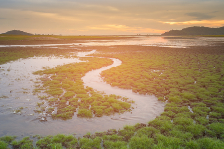 soil erosion: Early brith ground with small water way with sunset skyline background, natural landscape background