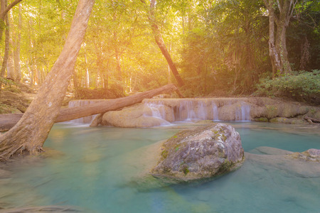 Deep forest tropical waterfall natural landscape background