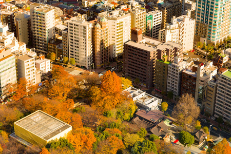 Pubic park in the city aerial view, Tokyo Japan cityscape background
