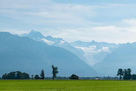 Green glass field skyline with Fox mountain, New Zealand natural landscape background Stock Photo