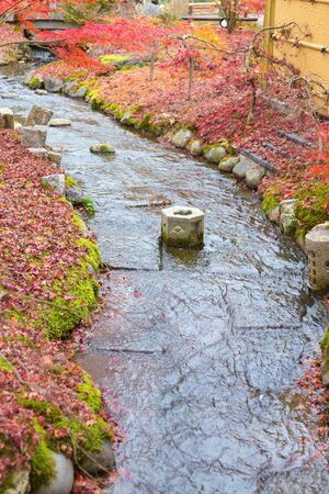 Natural water way with fallen red maple leaves, Japan natural landscape background Reklamní fotografie