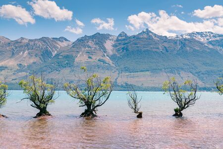 Glenorchy water lake with mountain and blue sky New Zealand natural landscape background
