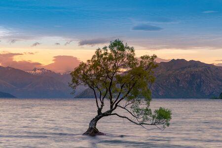 Beauty of after sunset at Wanaka lake, New Zealand natural landscape background Standard-Bild - 139748233