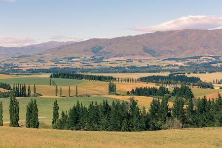 New Zealand mountain slope, natural landscape background Archivio Fotografico