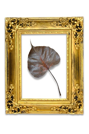 grandeur: Pho leaf in the Picture frame