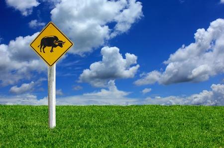 warning sign - Buffalo on the Lawn photo