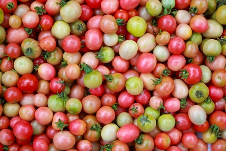 Background of local tomatoes for sale at a market