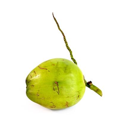 eagerly: Coconut fruit isolated on white background