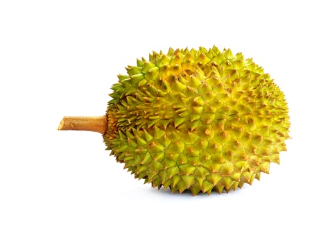 Durian, the king of fruits photo