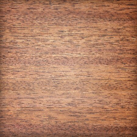 Wooden Background Stock Photo - 14584950