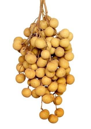 Longan fruit on white background photo
