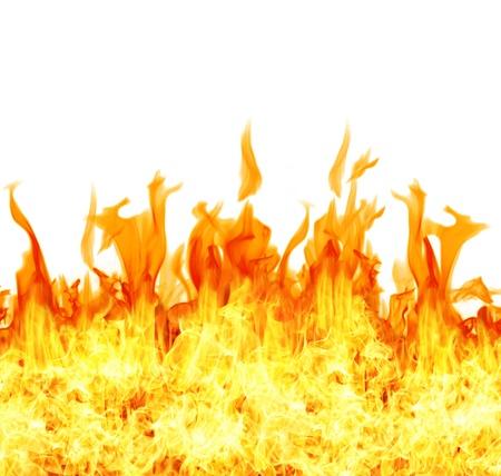 Burning fire on white background