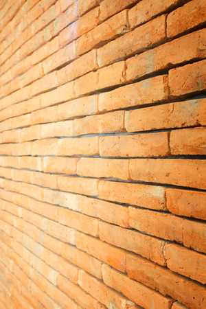 Brick Wall with Selective Focus photo