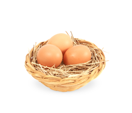 Nest with egg on a white background photo