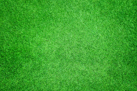 footballs: Beautiful green grass texture