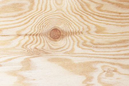 plywood texture with gnarl and  natural wood pattern photo