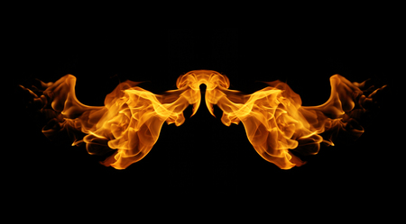 resemble: abstract fire flames resemble wing on black background