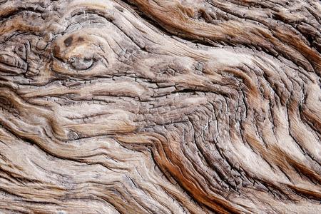 ウッド テクスチャ ビーチ死んでウッド テクスチャ表示のひび割れパターン