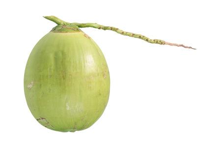 frescura: la frescura de coco aislado en blanco