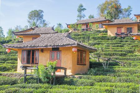 Tea Plantation resort Chinese style in Ban Rak Thai. Mae Hong Son, Thailand