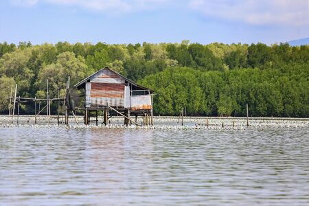 Fishermans house In the sea, mangrove forests in Thailand