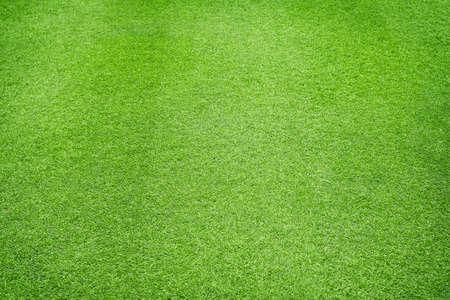 Natural Green grass texture background Close up Top view