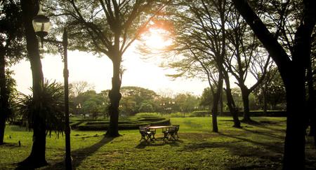 Wooden table set under the big tree. The evening sun shines, so beautiful, it reminds us of the one we love the one who waits.