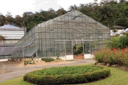 glasshouse: Conservatory Glasshouse