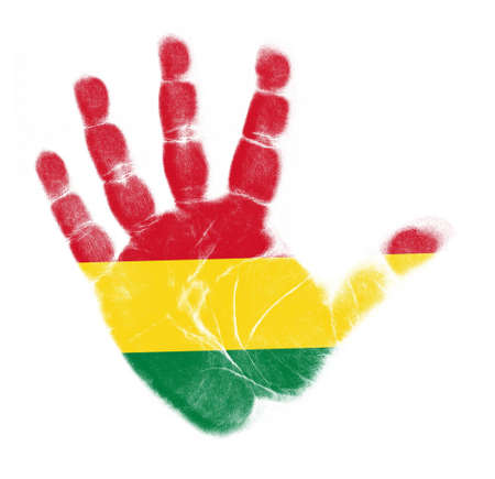 Bolivia flag impresión de la palma aisladas sobre fondo blanco