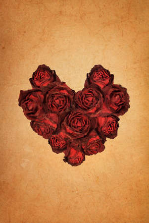 Heart shape red rose on old brown grunge paper background  photo