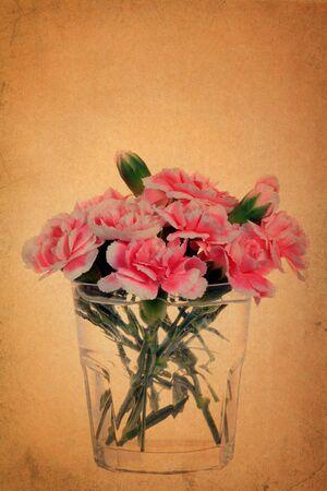 Carnation flower on vintage grunge paper backgroun photo