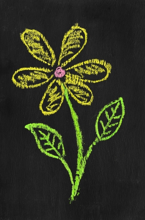 Colorful chalk illustration of flower by kid on blackboard  illustration