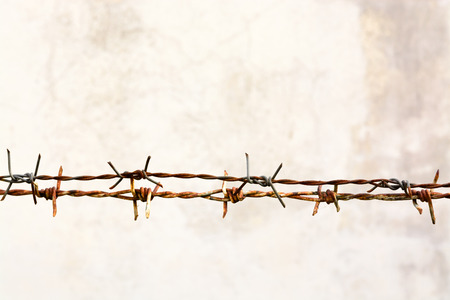 barb wire: Grunge rusty barbed wire Stock Photo