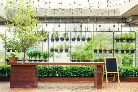 Outdoor wooden bar counter in garden and plant wall background Standard-Bild