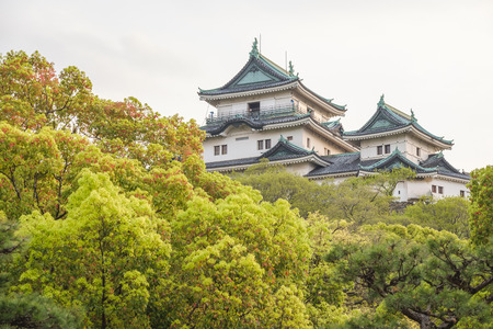 Wakayama castle in spring time