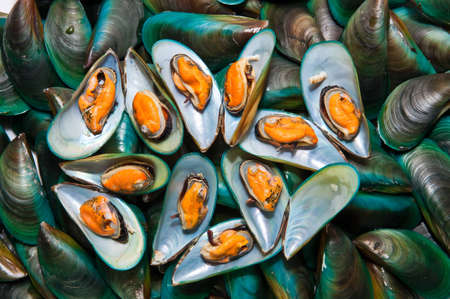 Fresh mussels at the market in Thaillnd Stock Photo - 10558271